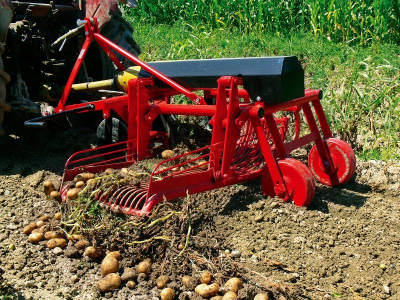 Как вырастить высокий урожай картофеля